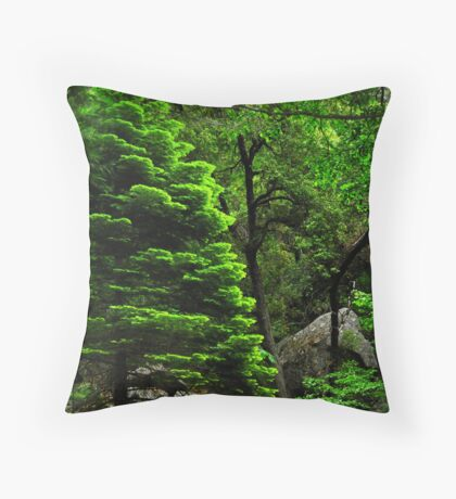 Evergreen Forests Throw Pillow