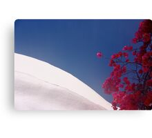 Primary Colors of Mykanos Canvas Print