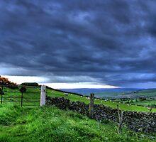"""Comes The Storm"" by Bradley Shawn  Rabon"