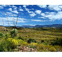 High Desert Oasis Photographic Print
