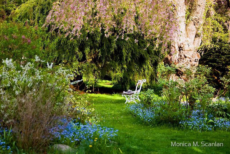 Bench Under the Cherry Tree by Monica M. Scanlan