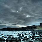 Dunstanburgh Castle  by Michael Brewis