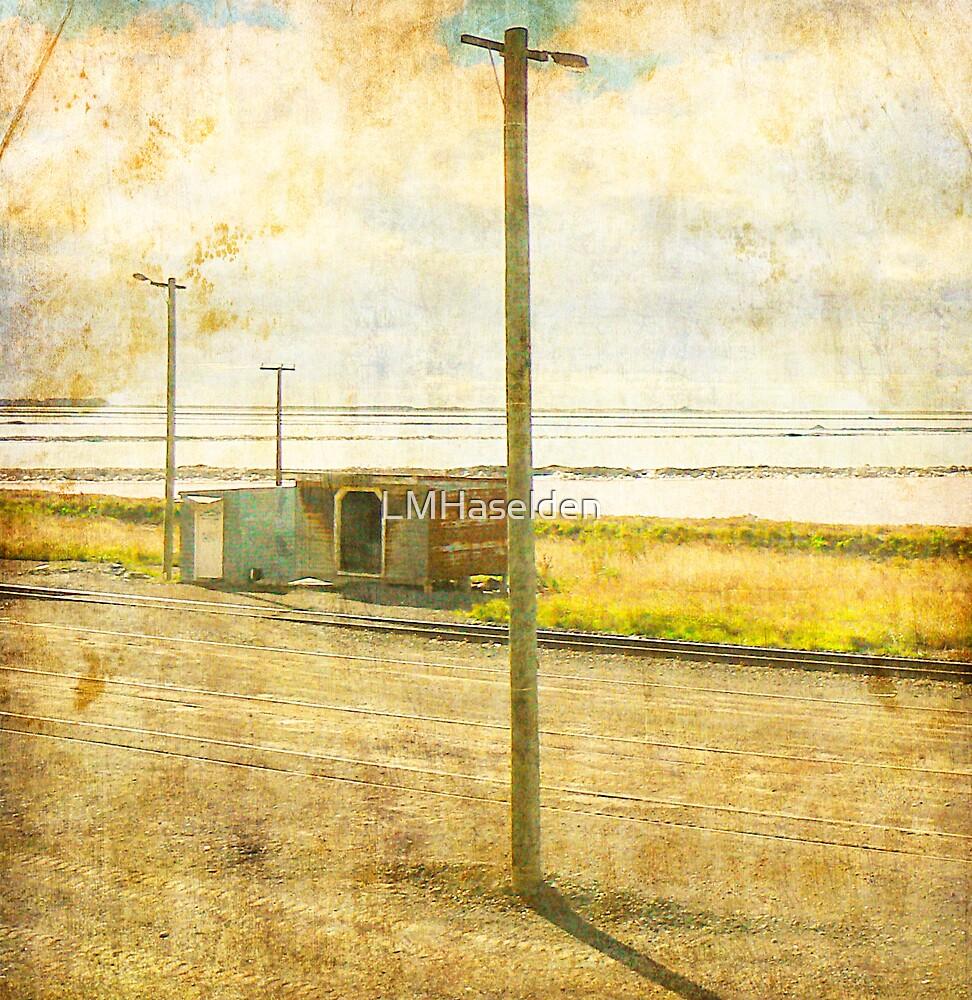Grassmere Metro by Lynne Haselden