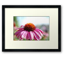 Stand up! Framed Print