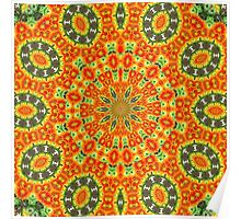 Kaleidoscope of Bold Orange Gazanias  Poster