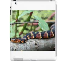 Slither iPad Case/Skin