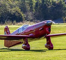 Percival Mew Gull replica G-HEKL taxies in by Colin Smedley
