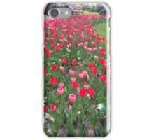 Tuesday Tulips iPhone Case/Skin