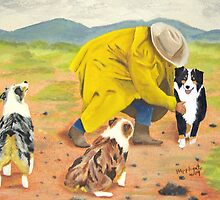 After the Rain ~ Australian Shepherd ~ Oil Painting by Barbara Applegate