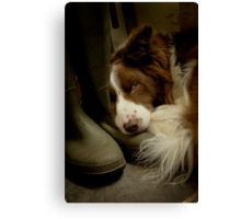 Smelly Welly Canvas Print