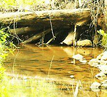 Under The Dam by jenmabry