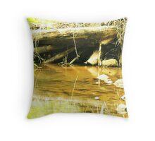 Under The Dam Throw Pillow
