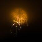 Firework Jellyfish by Ryan Piercey