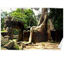 Ta Prohm Temple II - Angkor, Cambodia. Poster