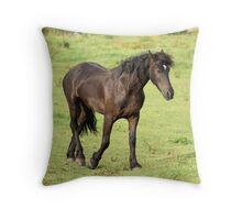 Frysian horse  Throw Pillow