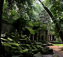 Ta Prohm Temple III - Angkor, Cambodia. by Tiffany Lenoir