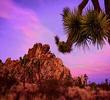 'High Desert Twilight' by DLUhlinger