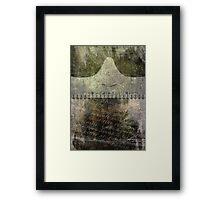 Lie Framed Print