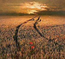 Lost Hearts by JohnAllmark