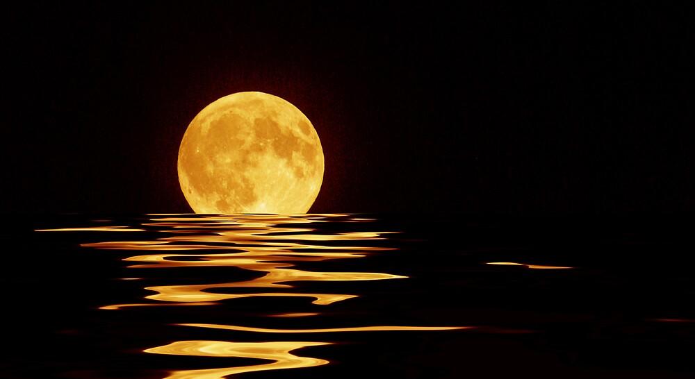 Moonlight Dip by kittyrodehorst