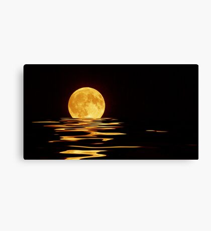 Moonlight Dip Canvas Print