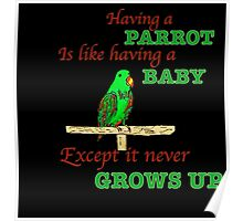 Having a Parrot is like having a Baby. Poster