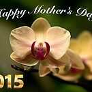 2015 Happy Mother's Day Card by TJ Baccari Photography