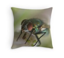 blow fly with pollen Throw Pillow