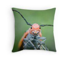 happy beetle - Red Milkweed Beetle (Tetraopes tetrophthalmus) Throw Pillow