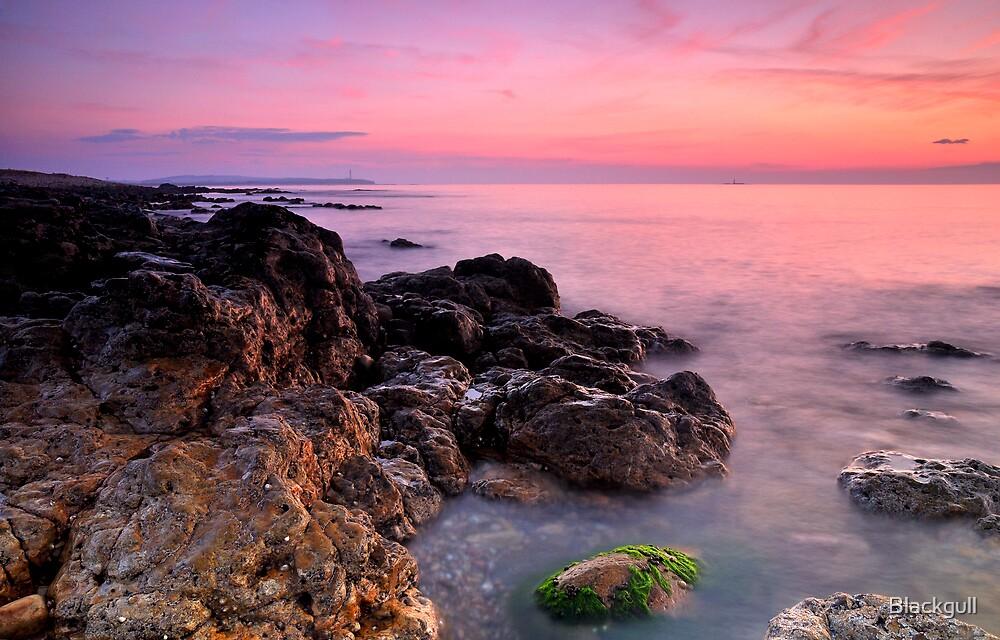 On The Rocks by Blackgull