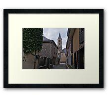 Biert Framed Print