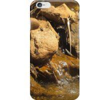 Tiny Waterfall iPhone Case/Skin