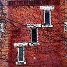 Cascading Windows by Brian Gaynor