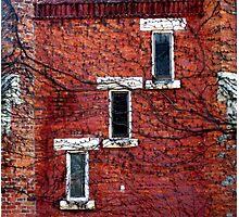 Cascading Windows Photographic Print