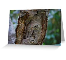 Tree Bark Greeting Card