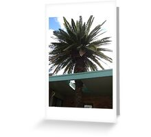 Roof Palm Greeting Card