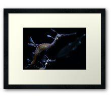Underwater Dragons Framed Print