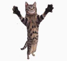 Kitteh Grabs One Piece - Short Sleeve