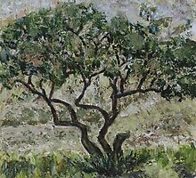 Olive Tree by Mila Birger