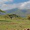 NATURAL AFRICAN LANDSCAPES