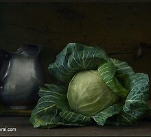 photo vegetable ilustra by balom