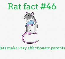 RAT FACTS #46 by rattytatty