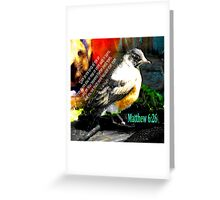 Matthew 6:26 Robin Greeting Card