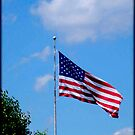 Happy 4th of July America! (please read description) by Marie Sharp