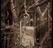 The Secret Garden by David Petranker
