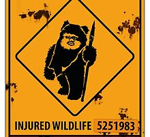 BEWARE EWOK XING by mellowmind