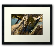 The Love Tree over 360 bridge Framed Print