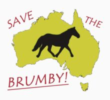 Save The Brumby - prototype by aimznabz