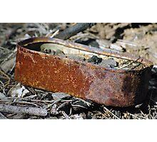 rusty sardines Photographic Print