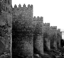 Ancient wall in Avila, Spain by tandyphotoraphy